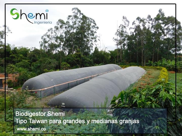 Tipo Taiwan para grandes y medianas granjas